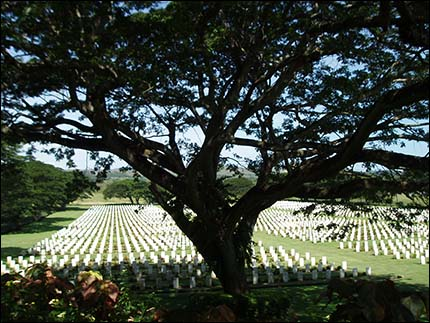 Bomana War Cemetary, Port Moresby 2008