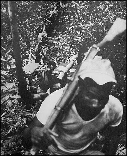 Bush track (c) James L. Anderson