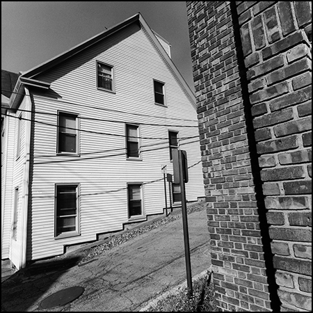 Journal 20160502 Sticks and Stones - (c) Lee Friedlander2
